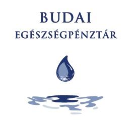 budaiep_logo